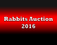 Rabbits Auction 2016