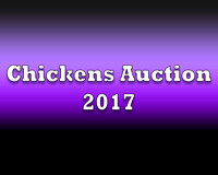 Chickens Auction 2017