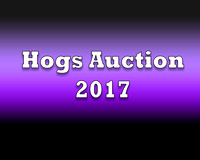 Hogs Auction 2017