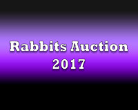 Rabbits Auction 2017